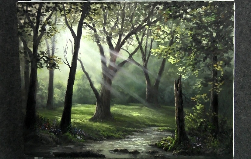 kevin-hill-sunray-forest