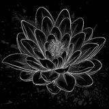 czarny-i-biały-lotosowy-kwiat-malujący-w-grafika-stylu-odizolowywającym-42808837
